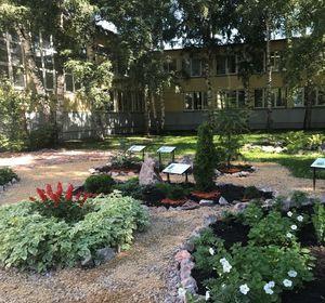 В Красноярске появится сквер для инвалидов-колясочников и ботанический сад с редкими деревьями