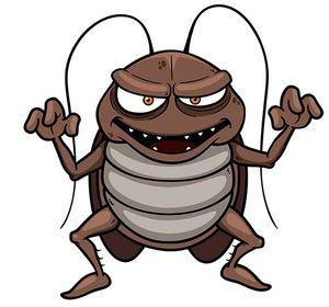 В школе поселились карпы и тараканы